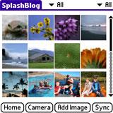 SplashBlog screenshot